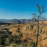 04.06.2018 – Red Hills Desert Garden – Virgin River Gorge